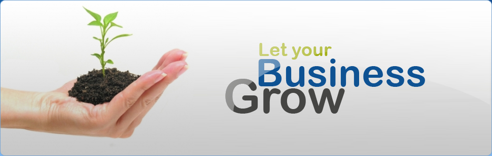 Lets grow you business - seattle Online Marketing