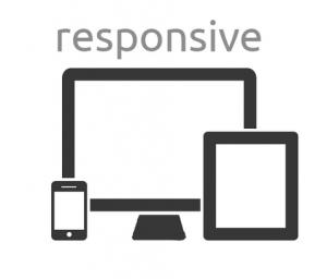 Tacoma & Seattle web development - responsive design
