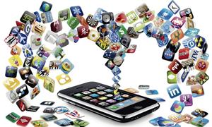 Mobile Web App Tacoma & Seattle WA